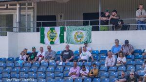 Publik med flaggor och tröjor märkta Hammarby.